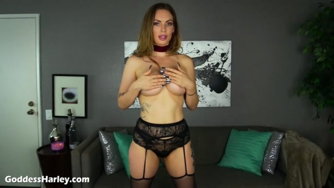 Goddess Harley - Another Party Cuckold